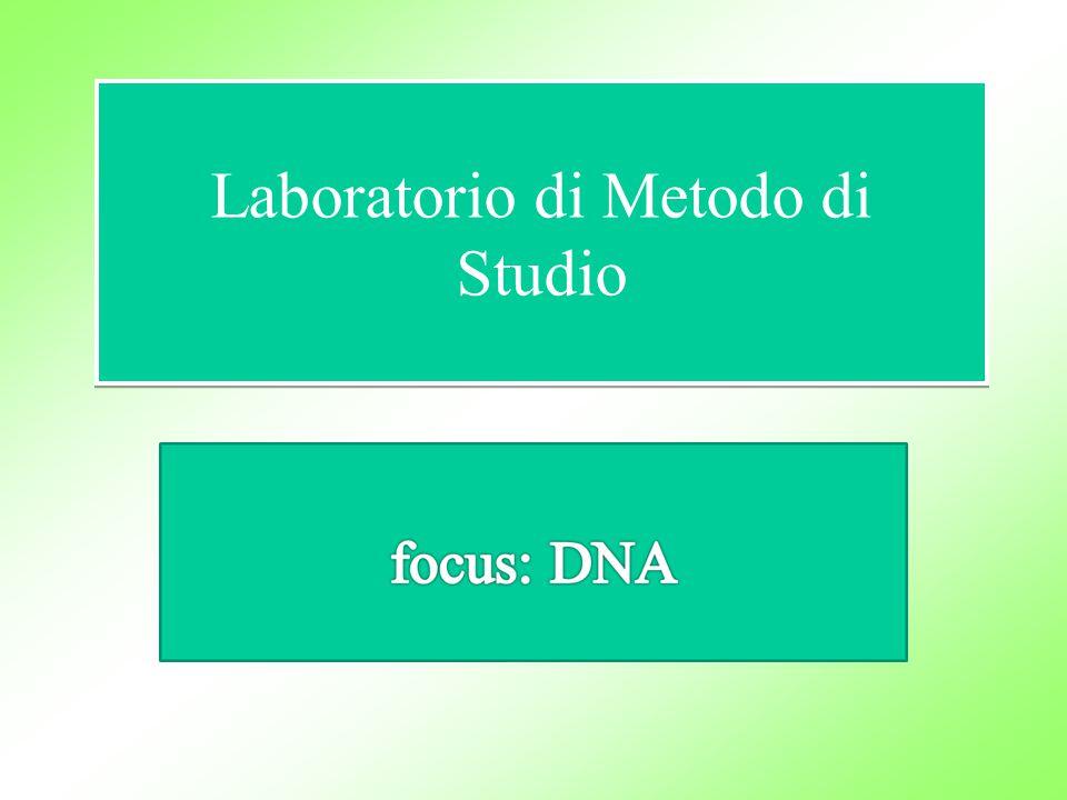 Laboratorio di Metodo di Studio