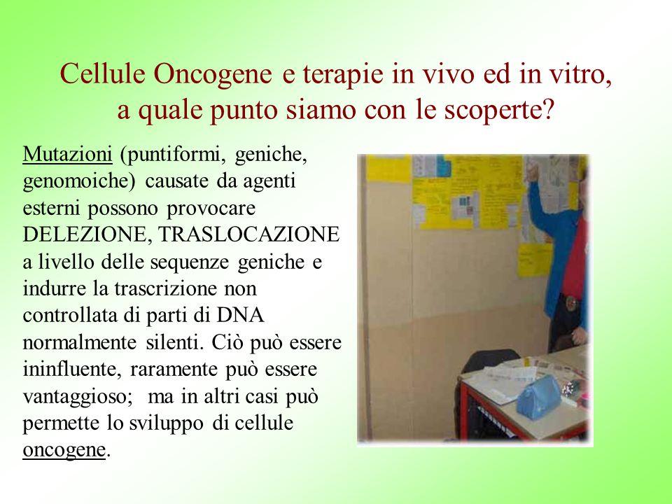 Cellule Oncogene e terapie in vivo ed in vitro, a quale punto siamo con le scoperte.