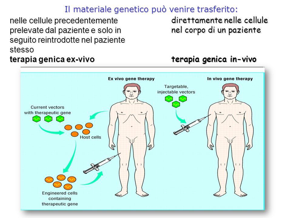 Il materiale genetico può venire trasferito: direttamente nelle cellule nel corpo di un paziente terapia genica in-vivo nelle cellule precedentemente