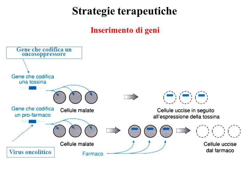 Inserimento di geni Strategie terapeutiche Virus oncolitico Gene che codifica un oncosoppressore