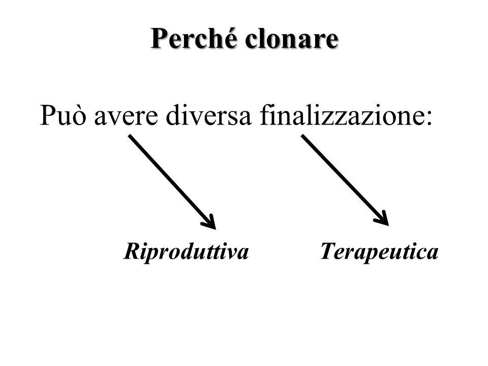 Può avere diversa finalizzazione: RiproduttivaTerapeutica Perché clonare