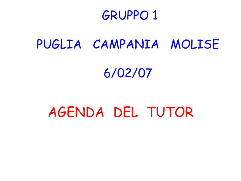 GRUPPO 1 PUGLIA CAMPANIA MOLISE 6/02/07 AGENDA DEL TUTOR