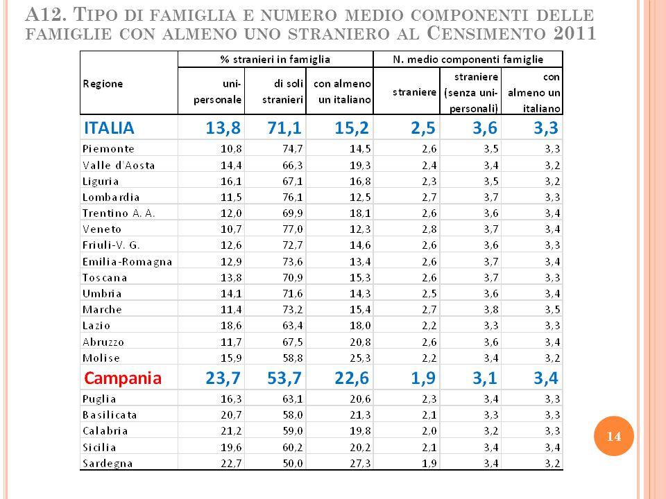 A12. T IPO DI FAMIGLIA E NUMERO MEDIO COMPONENTI DELLE FAMIGLIE CON ALMENO UNO STRANIERO AL C ENSIMENTO 2011 14