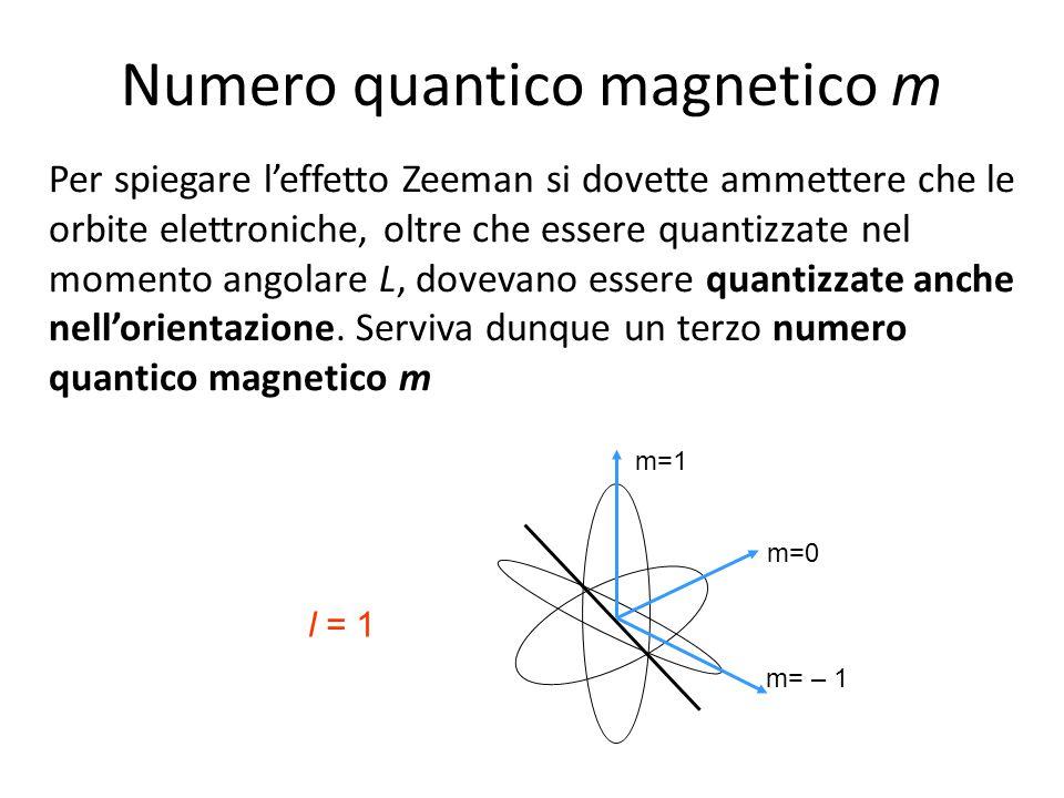 Per spiegare l'effetto Zeeman si dovette ammettere che le orbite elettroniche, oltre che essere quantizzate nel momento angolare L, dovevano essere qu