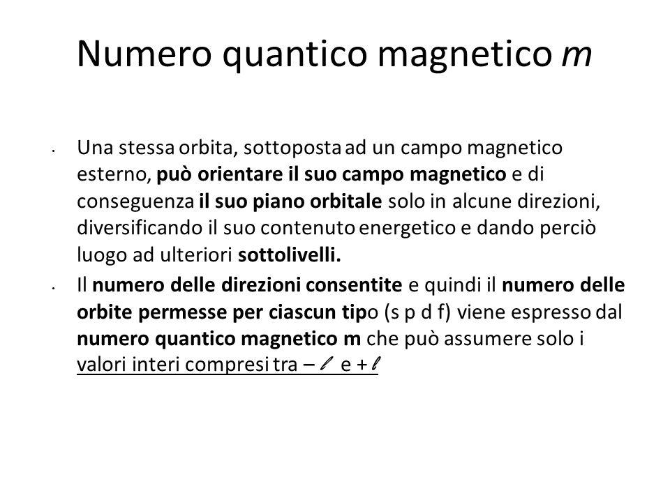 B possibili orientazioni per L quando l = 2 in presenza di un campo magnetico B m = – 2, – 1, 0, 1, 2 La sua proiezione lungo un asse parallelo a B vale l = 2 Numero quantico magnetico m