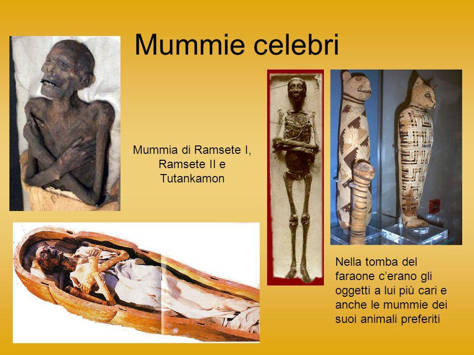 Mummie celebri Mummia di Ramsete I, Ramsete II e Tutankamon Nella tomba del faraone c'erano gli oggetti a lui più cari e anche le mummie dei suoi anim