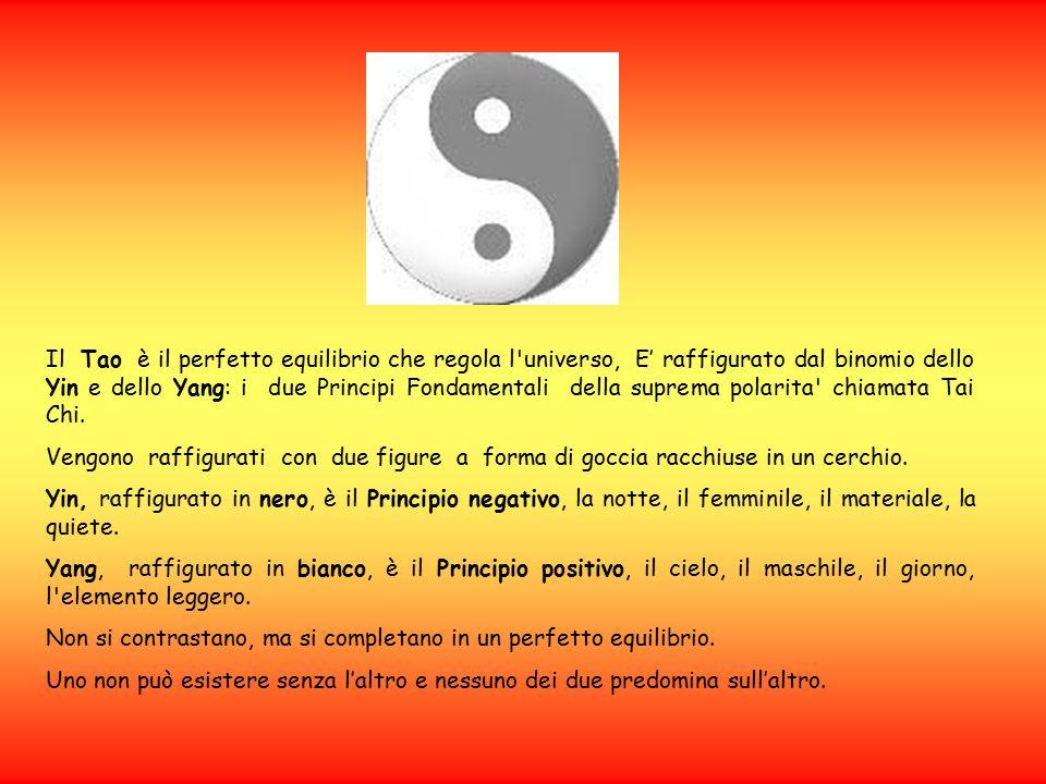 Il Tao è il perfetto equilibrio che regola l universo, E' raffigurato dal binomio dello Yin e dello Yang: i due Principi Fondamentali della suprema polarita chiamata Tai Chi.