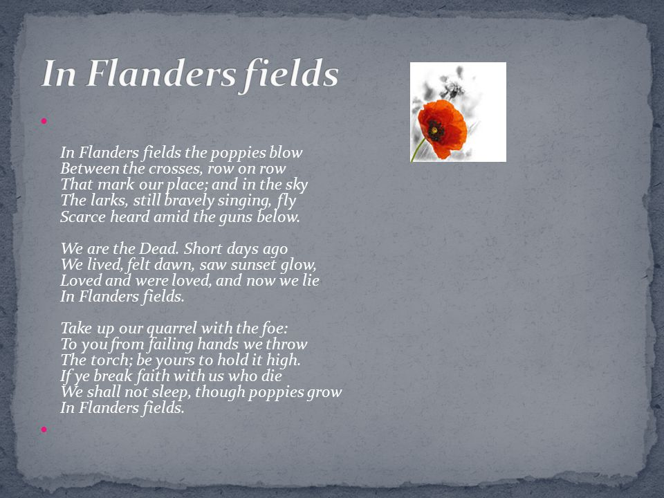 In Flanders fields the poppies blow Between the crosses, row on row That mark our place; and in the sky The larks, still bravely singing, fly Scarce h