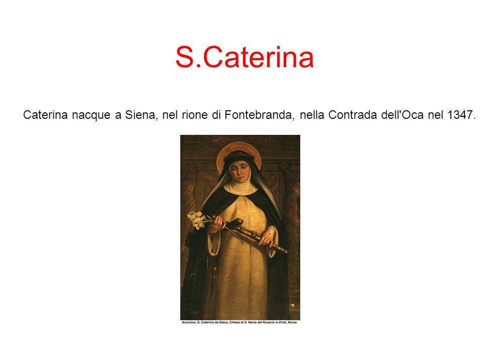 S.Caterina Caterina nacque a Siena, nel rione di Fontebranda, nella Contrada dell Oca nel 1347.