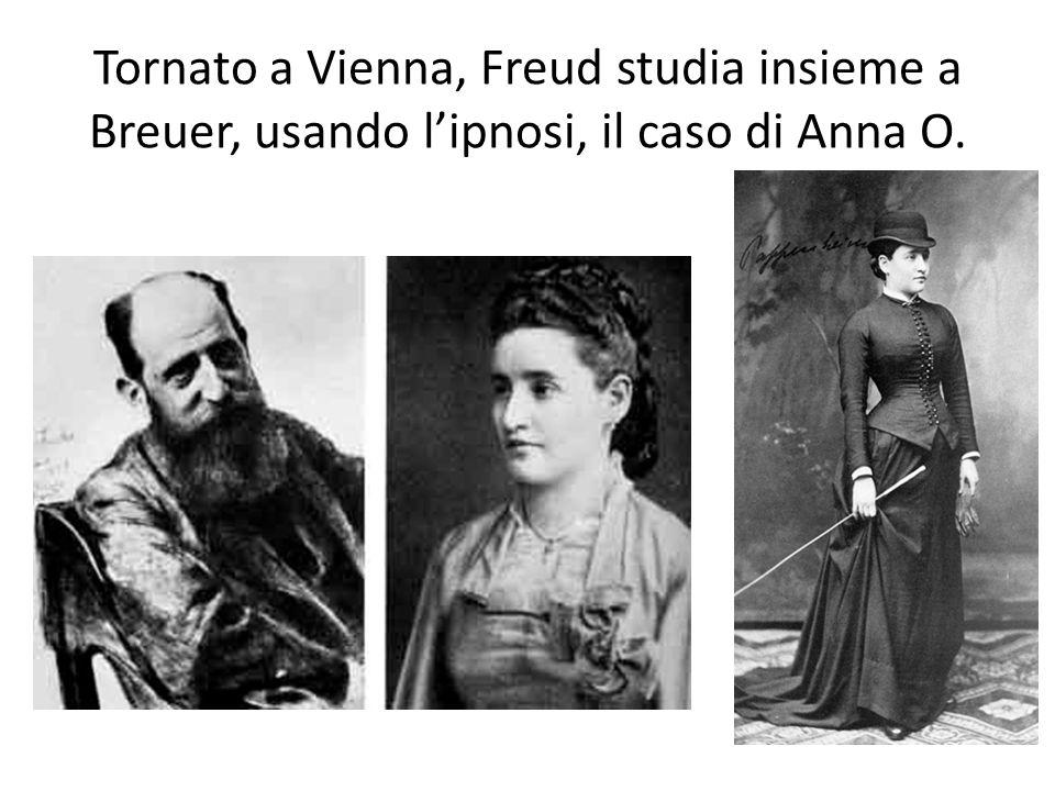 Tornato a Vienna, Freud studia insieme a Breuer, usando l'ipnosi, il caso di Anna O.