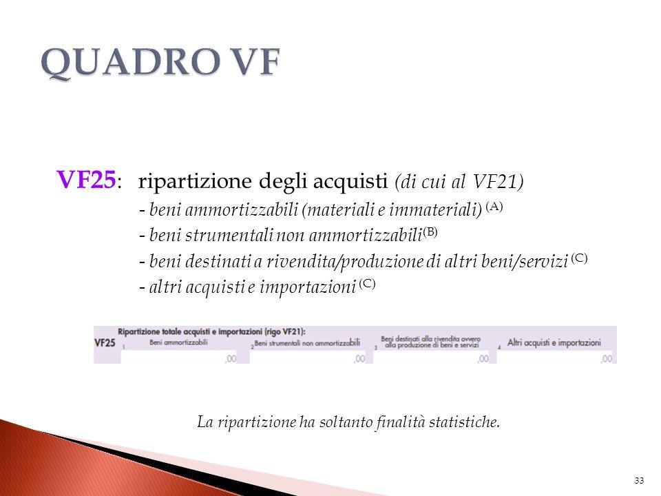 VF25 : ripartizione degli acquisti (di cui al VF21) - beni ammortizzabili (materiali e immateriali) (A) - beni strumentali non ammortizzabili (B) - be