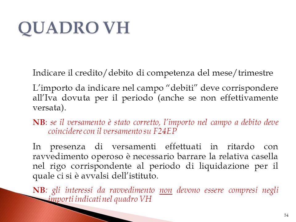 """Indicare il credito/debito di competenza del mese/trimestre L'importo da indicare nel campo """"debiti"""" deve corrispondere all'Iva dovuta per il periodo"""
