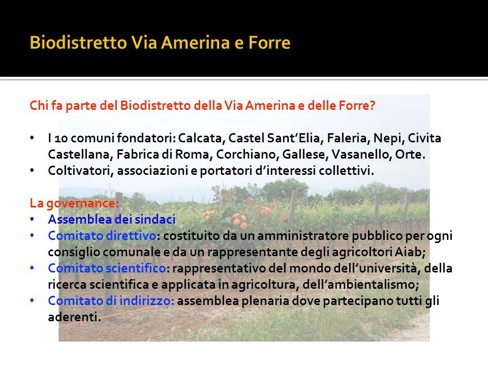 Chi fa parte del Biodistretto della Via Amerina e delle Forre? I 10 comuni fondatori: Calcata, Castel Sant'Elia, Faleria, Nepi, Civita Castellana, Fab