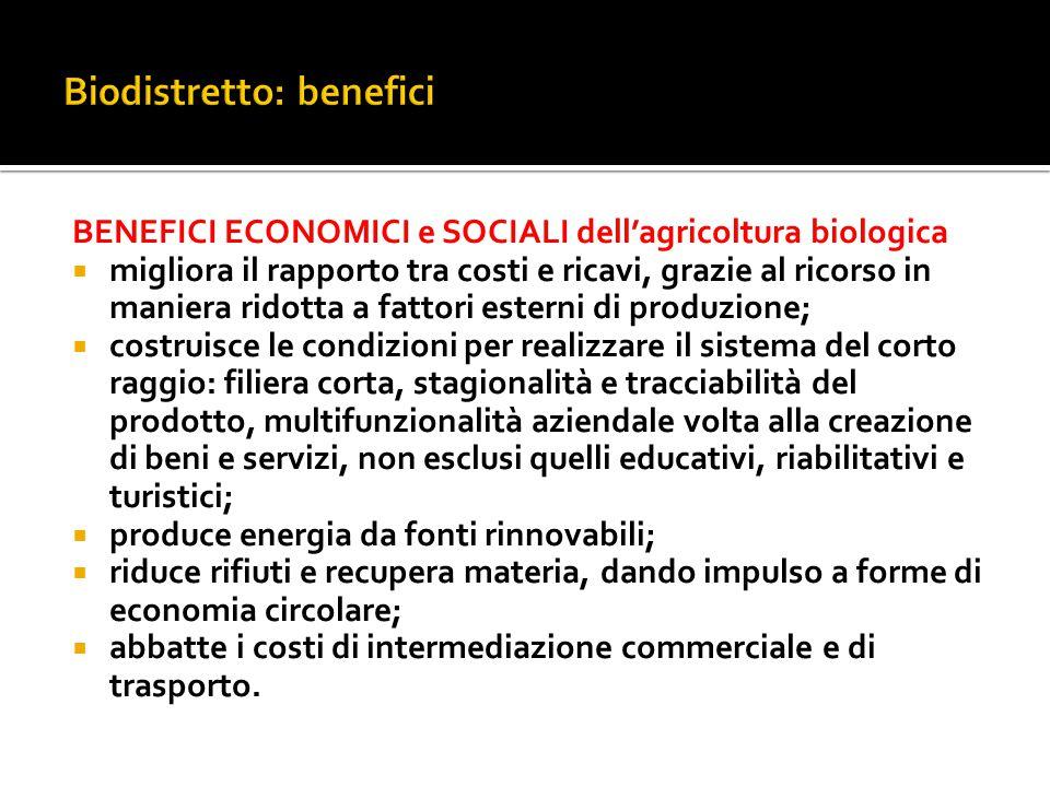 International Network of Eco Regions - INNER Corchiano, 14 dicembre 2014  La Rete internazionale intende sviluppare e rafforzare strategie per lo sviluppo dei biodistretti, nel segno della sostenibilità e dell'equità sociale.