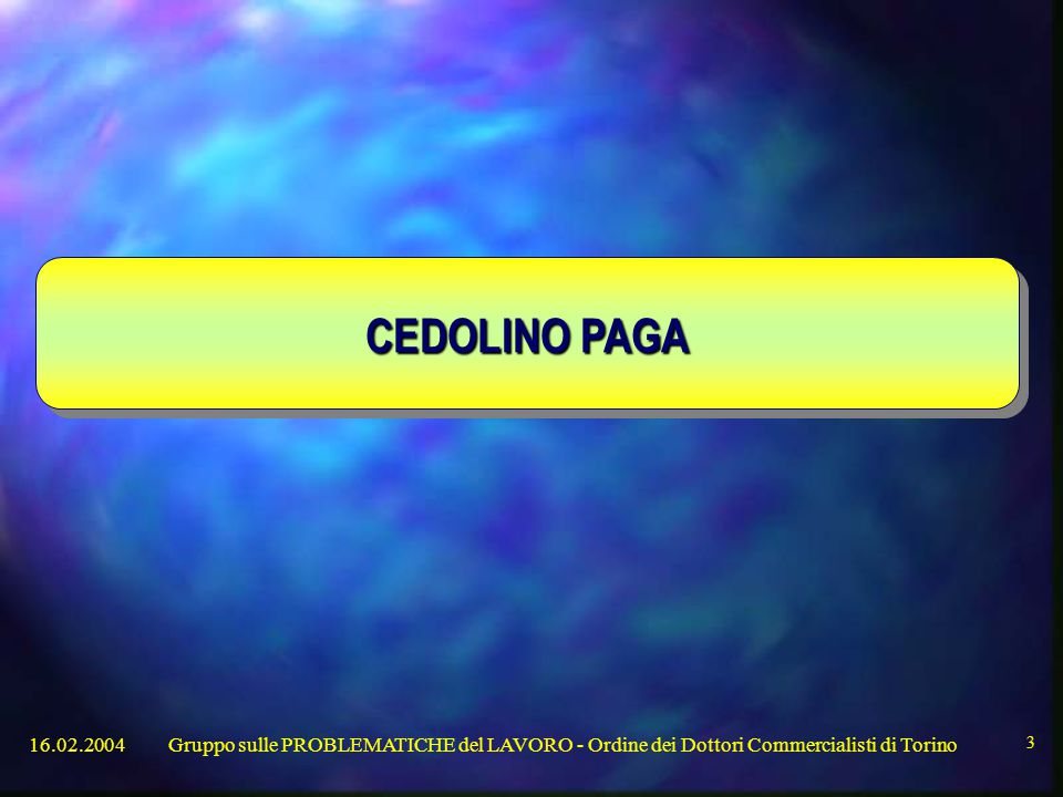 16.02.2004Gruppo sulle PROBLEMATICHE del LAVORO - Ordine dei Dottori Commercialisti di Torino 3 CEDOLINO PAGA