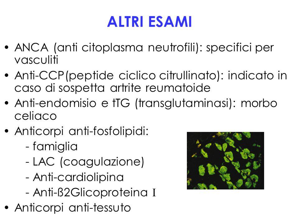 ALTRI ESAMI ANCA (anti citoplasma neutrofili): specifici per vasculiti Anti-CCP(peptide ciclico citrullinato): indicato in caso di sospetta artrite re