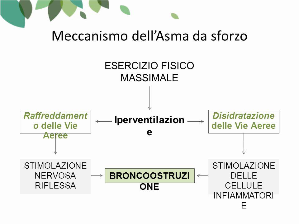 Meccanismo dell'Asma da sforzo ESERCIZIO FISICO MASSIMALE Iperventilazion e BRONCOOSTRUZI ONE Disidratazione delle Vie Aeree Raffreddament o delle Vie Aeree STIMOLAZIONE DELLE CELLULE INFIAMMATORI E STIMOLAZIONE NERVOSA RIFLESSA