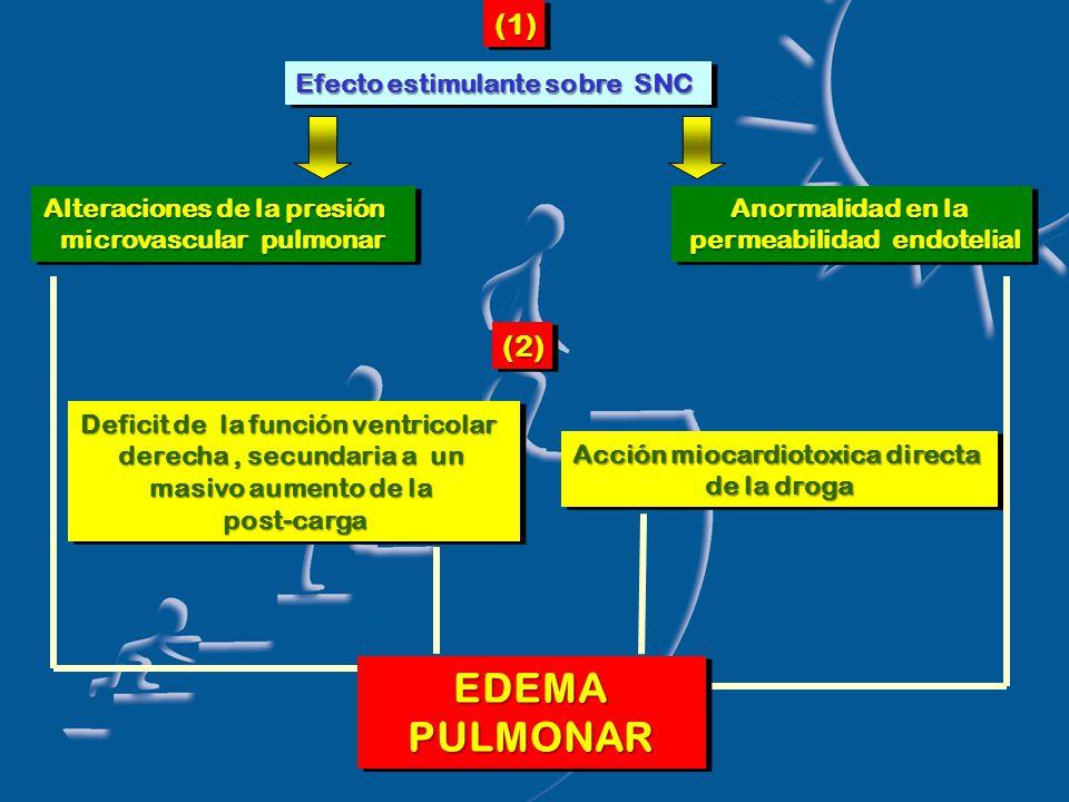 Efecto estimulante sobre SNC Alteraciones de la presión microvascular pulmonar Alteraciones de la presión microvascular pulmonar Anormalidad en la permeabilidad endotelial permeabilidad endotelial Anormalidad en la permeabilidad endotelial permeabilidad endotelial(1)(1)(2)(2) Deficit de la función ventricolar derecha, secundaria a un masivo aumento de la post-carga post-carga Deficit de la función ventricolar derecha, secundaria a un masivo aumento de la post-carga post-carga Acción miocardiotoxica directa de la droga Acción miocardiotoxica directa de la droga EDEMAPULMONAREDEMAPULMONAR