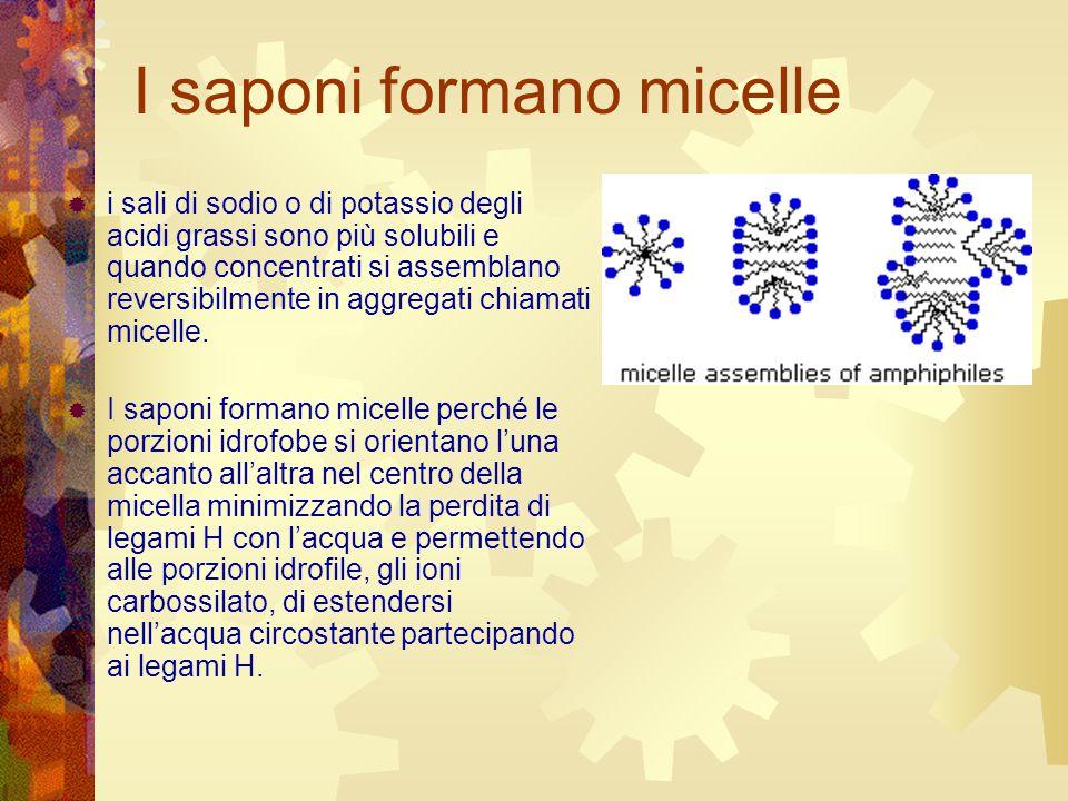 I saponi formano micelle  i sali di sodio o di potassio degli acidi grassi sono più solubili e quando concentrati si assemblano reversibilmente in ag