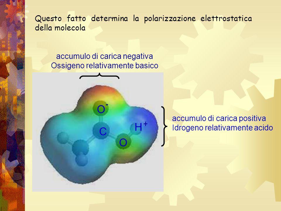 Questo fatto determina la polarizzazione elettrostatica della molecola accumulo di carica positiva Idrogeno relativamente acido accumulo di carica neg