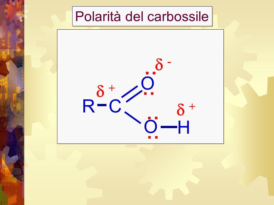 Strutture degli acidi grassi saturi ed insaturi Ogni atomo di carbonio lega il maggior numero possibile di atomi di idrogeno Contengono doppi legami che influenzano la forma della molecola e quindi della struttura di cui fa parte