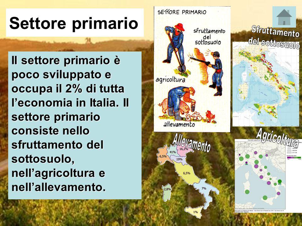 Settore primario Il settore primario è poco sviluppato e occupa il 2% di tutta l'economia in Italia. Il settore primario consiste nello sfruttamento d