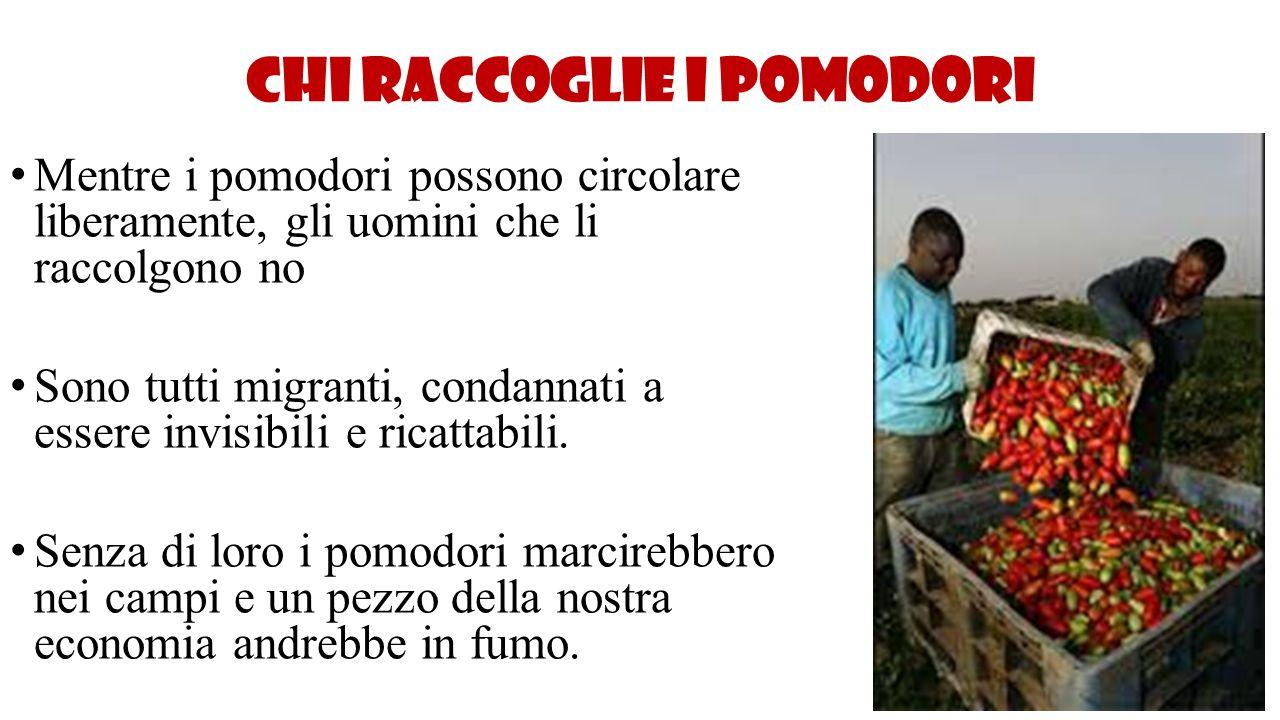 Chi raccoglie i pomodori Mentre i pomodori possono circolare liberamente, gli uomini che li raccolgono no Sono tutti migranti, condannati a essere inv