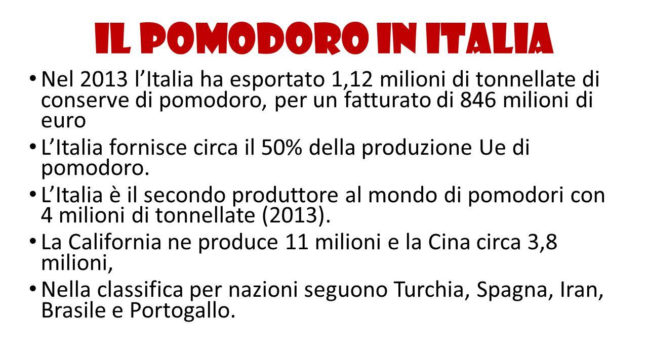 Il pomodoro in Italia Nel 2013 l'Italia ha esportato 1,12 milioni di tonnellate di conserve di pomodoro, per un fatturato di 846 milioni di euro L'Ita