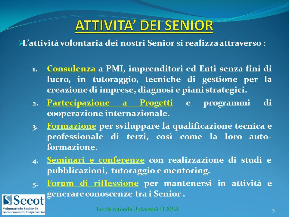  L'attività volontaria dei nostri Senior si realizza attraverso : 1. Consulenza a PMI, imprenditori ed Enti senza fini di lucro, in tutoraggio, tecni