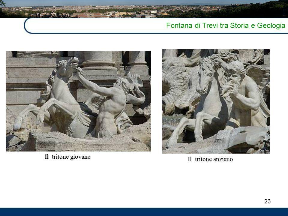 23 Fontana di Trevi tra Storia e Geologia Il tritone giovane Il tritone anziano