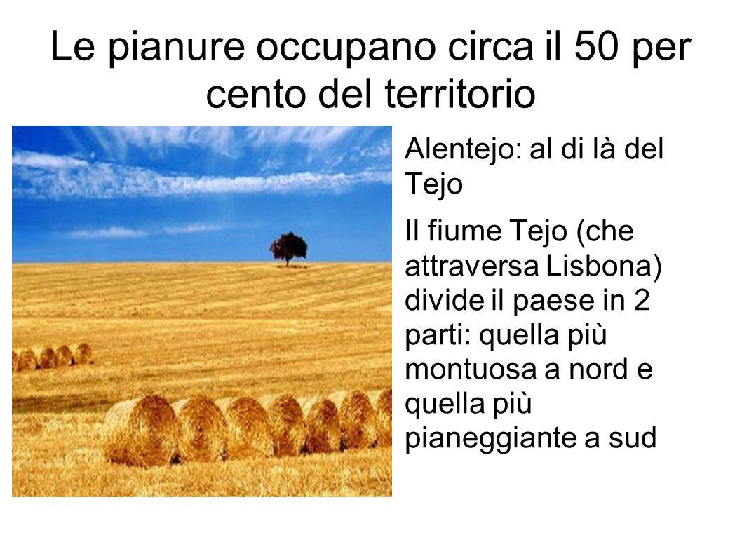 Le pianure occupano circa il 50 per cento del territorio Alentejo: al di là del Tejo Il fiume Tejo (che attraversa Lisbona) divide il paese in 2 parti