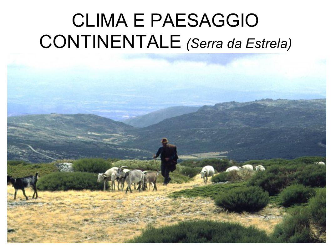 CLIMA E PAESAGGIO CONTINENTALE (Serra da Estrela)