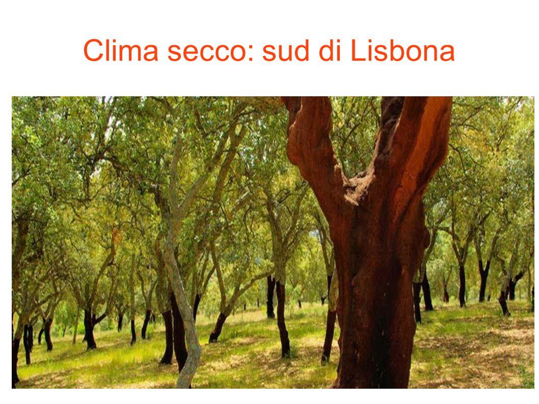Clima secco: sud di Lisbona