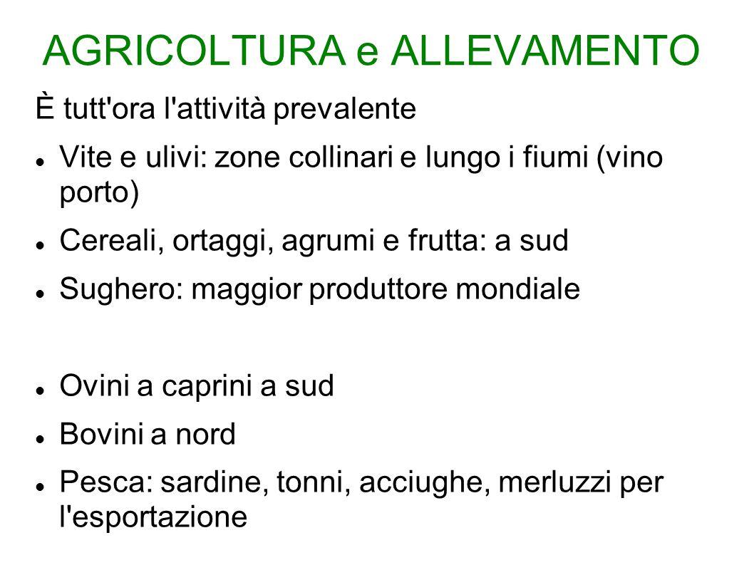 AGRICOLTURA e ALLEVAMENTO È tutt'ora l'attività prevalente Vite e ulivi: zone collinari e lungo i fiumi (vino porto) Cereali, ortaggi, agrumi e frutta