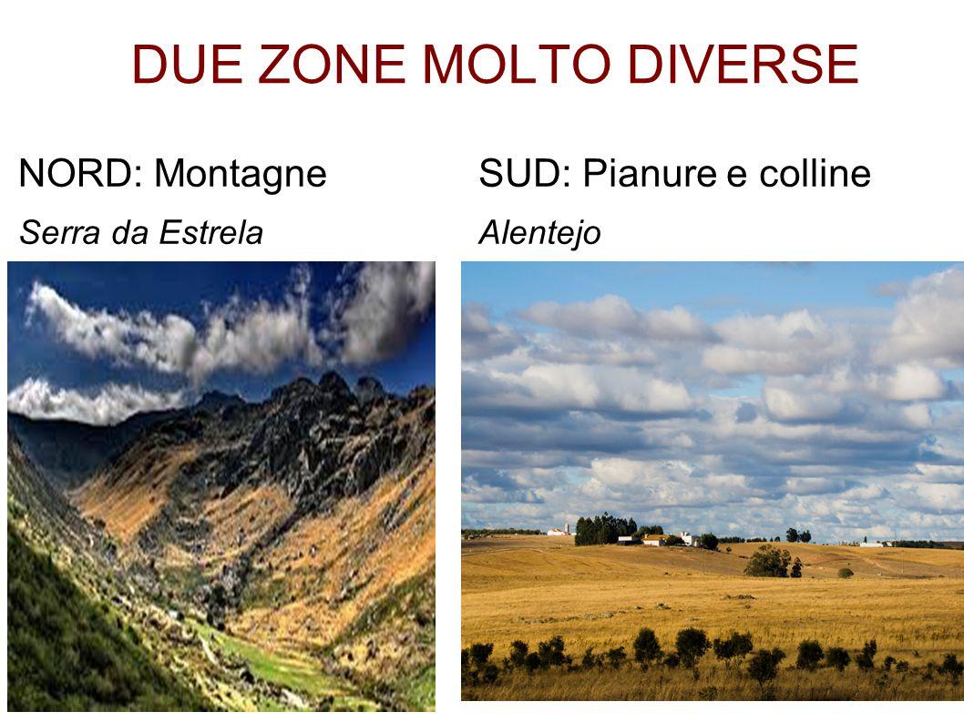 DUE ZONE MOLTO DIVERSE NORD: Montagne Serra da Estrela SUD: Pianure e colline Alentejo