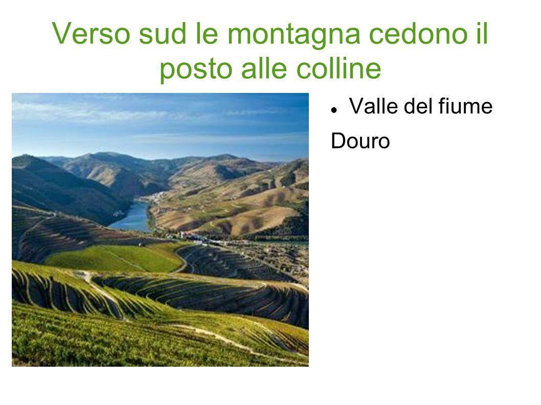 Verso sud le montagna cedono il posto alle colline Valle del fiume Douro