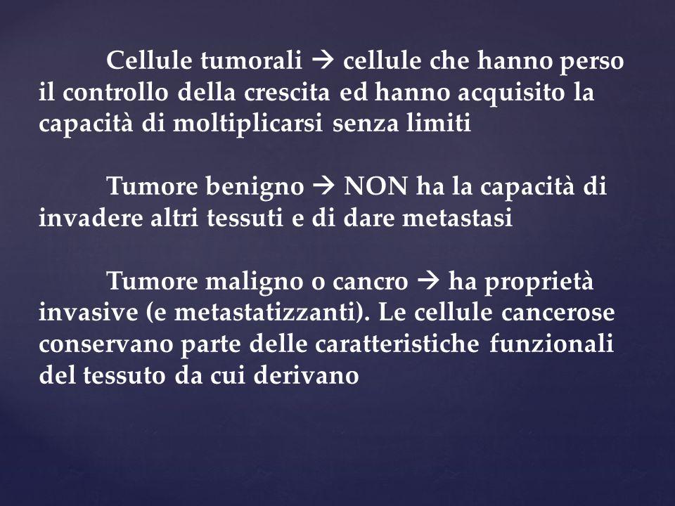 Cellule tumorali  cellule che hanno perso il controllo della crescita ed hanno acquisito la capacità di moltiplicarsi senza limiti Tumore benigno  N