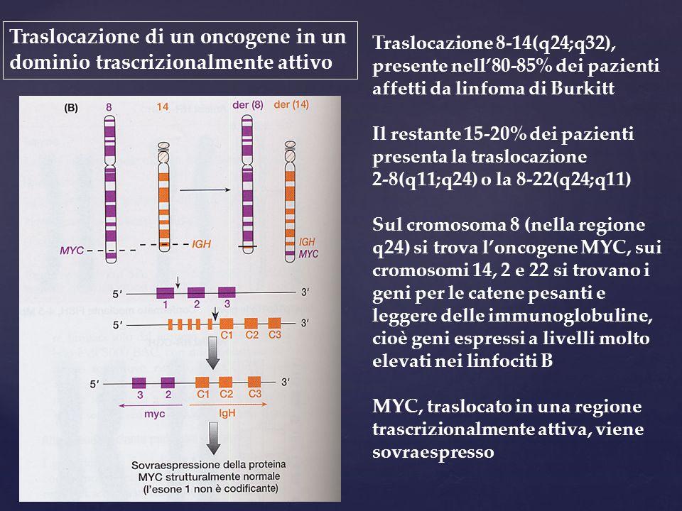 Traslocazione 8-14(q24;q32), presente nell'80-85% dei pazienti affetti da linfoma di Burkitt Il restante 15-20% dei pazienti presenta la traslocazione