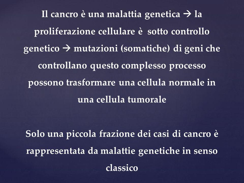 Il cancro è una malattia genetica  la proliferazione cellulare è sotto controllo genetico  mutazioni (somatiche) di geni che controllano questo comp