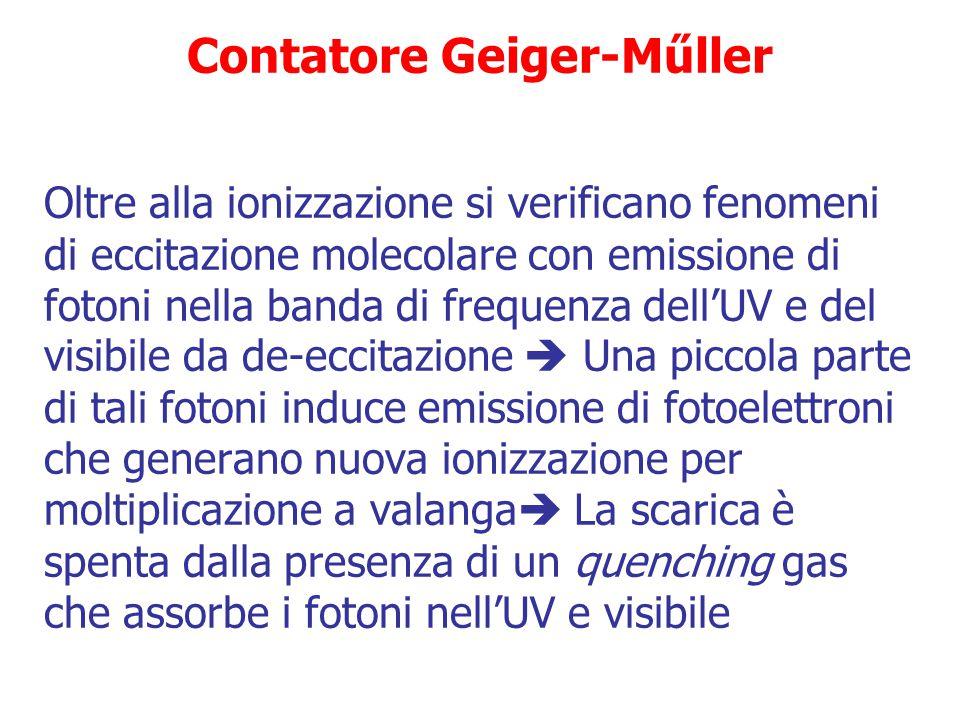 Rivelatori a ionizzazione E E contatori Geiger-Műller = campo elettrico molto elevato (>contatori proporzionali)  pochi elettroni in moto verso l'ano