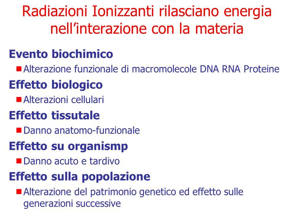 Evento chimico-fisico: azione diretta Molecole biologicamente importanti alterate