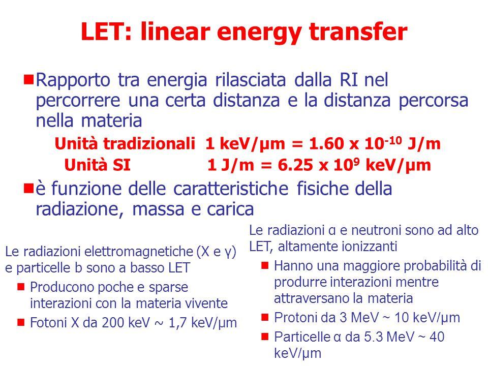  Trasferimento Lineare di Energia (LET)  Efficacia Biologica Relativa (RBE) Qualità delle radiazioni