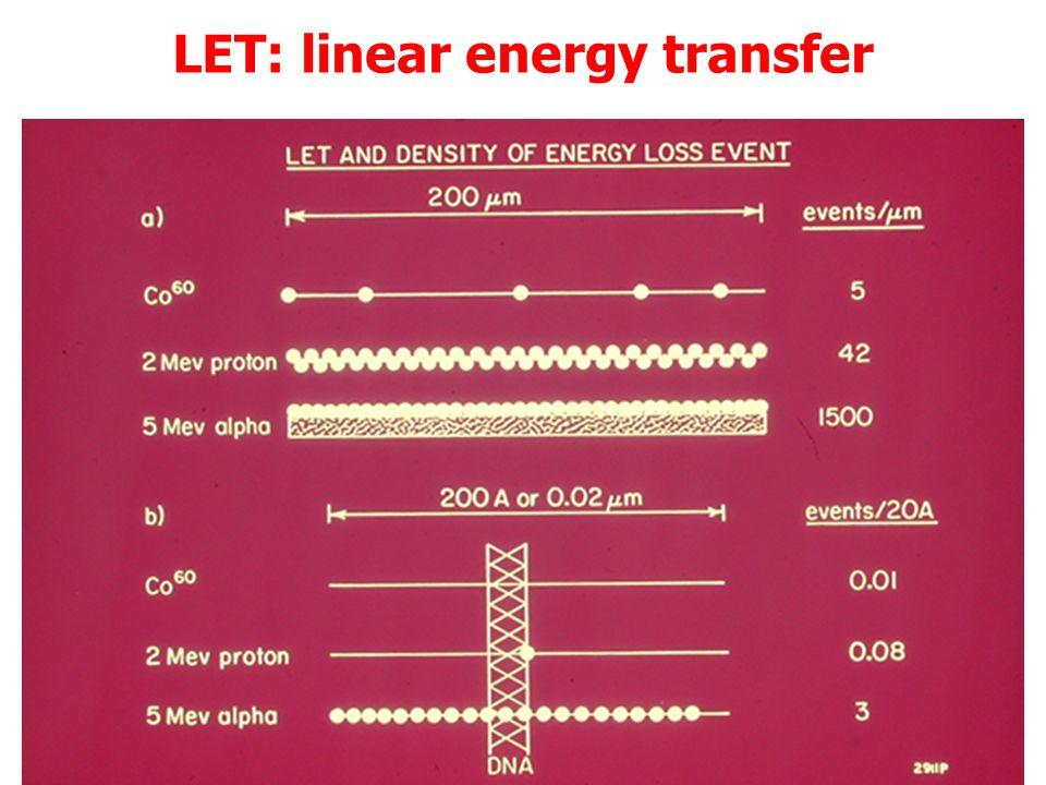 LET: linear energy transfer Piu' alto il LET di una radiazione, maggiore la probabilità di conseguenze biologiche TIPO DI RADIAZIONE LET (keV/m) 60 Co