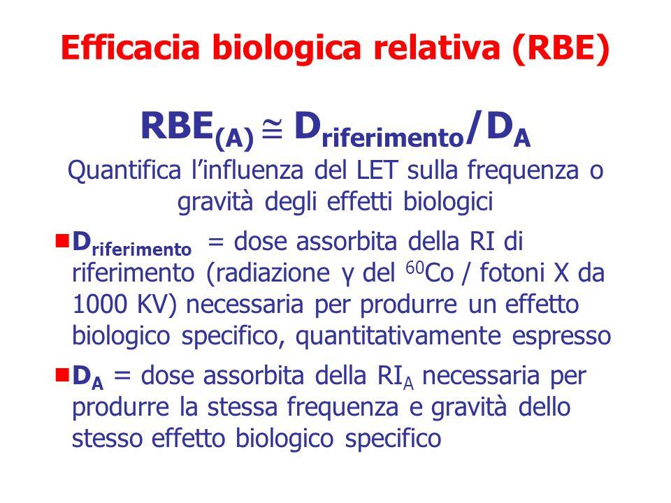 RBE: Efficacia biologica relativa  Rapporto tra due dosi di radiazioni ionizzanti diverse che provocano lo stesso effetto  La radiazione di riferime