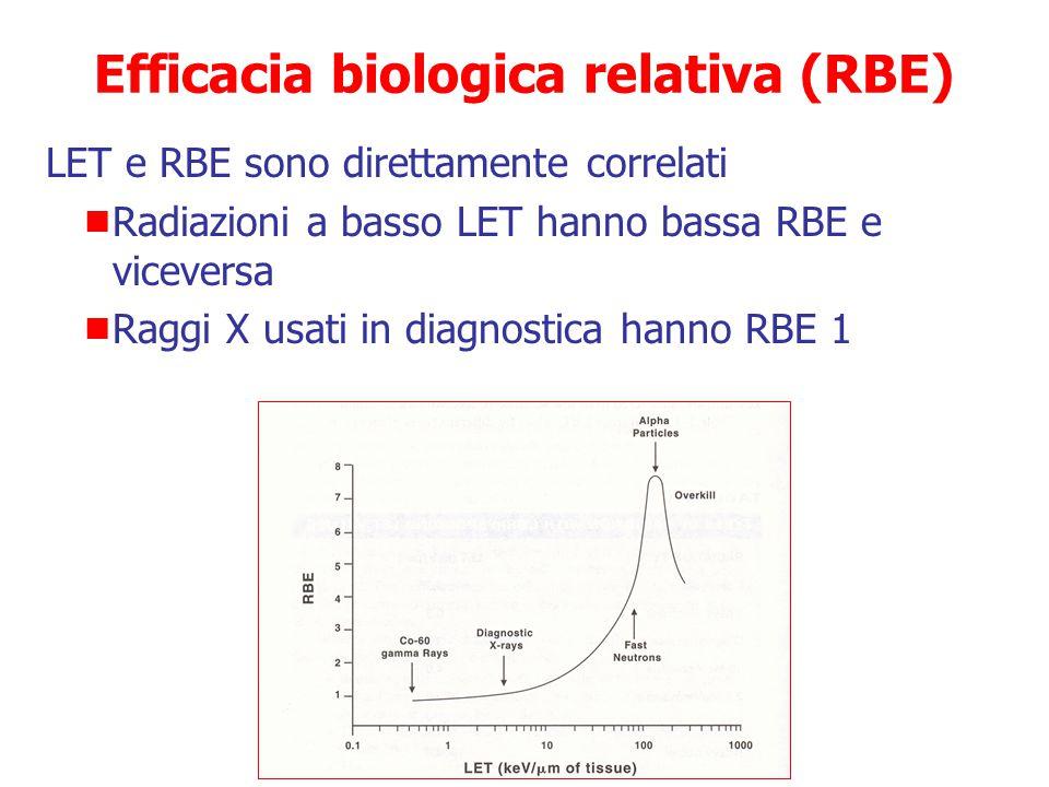 RBE (A)  D riferimento /D A Quantifica l'influenza del LET sulla frequenza o gravità degli effetti biologici ESEMPIO  Se irradiamo cellule con raggi