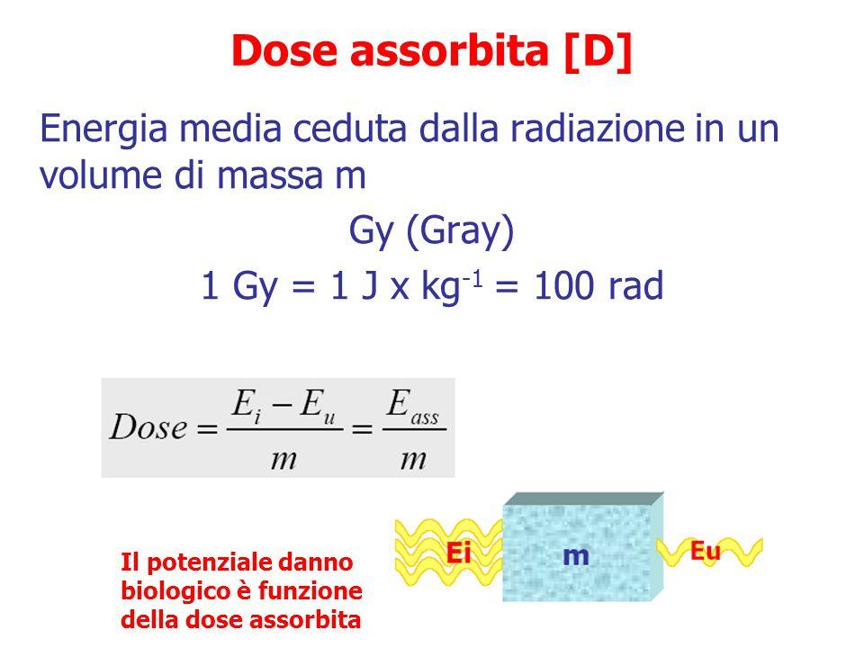 Unità di misura delle radiazioni Esposizione nell'aria Unità tradizionali Roentgen (R)  Quantità di raggi x e  <3 MeV in grado di produrre nell'aria