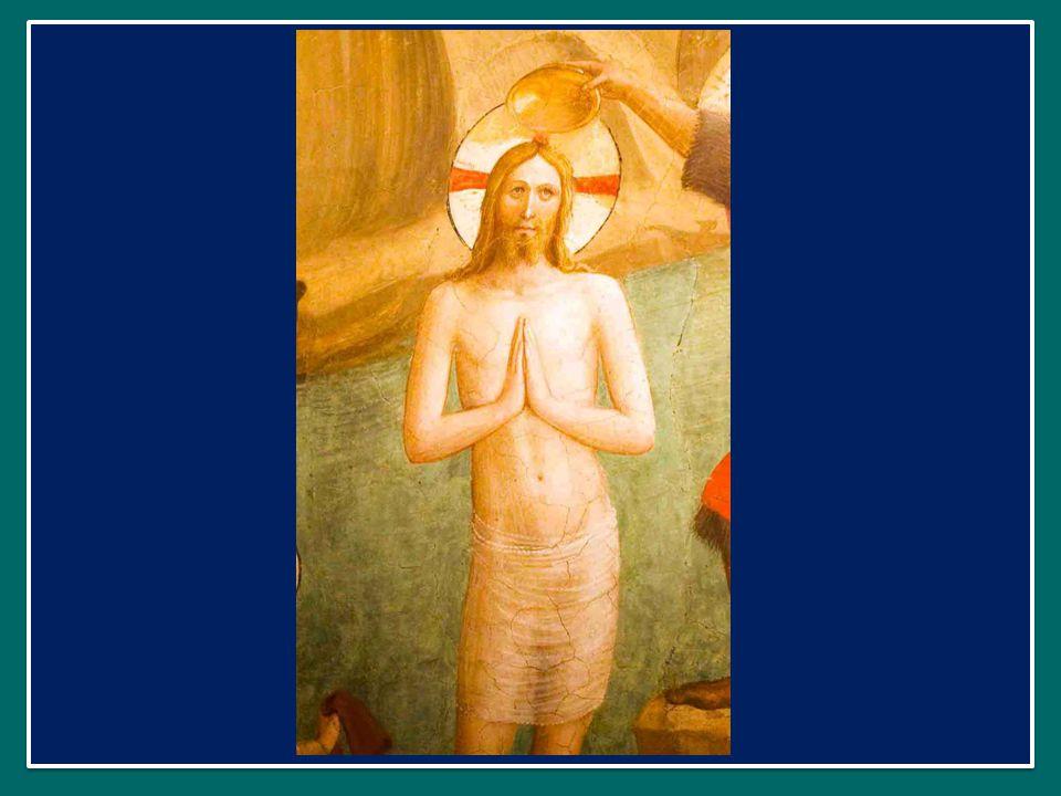 Questa espressione richiama quella di san Paolo: «Un solo Signore, una sola fede, un solo battesimo» ( Ef 4,5).