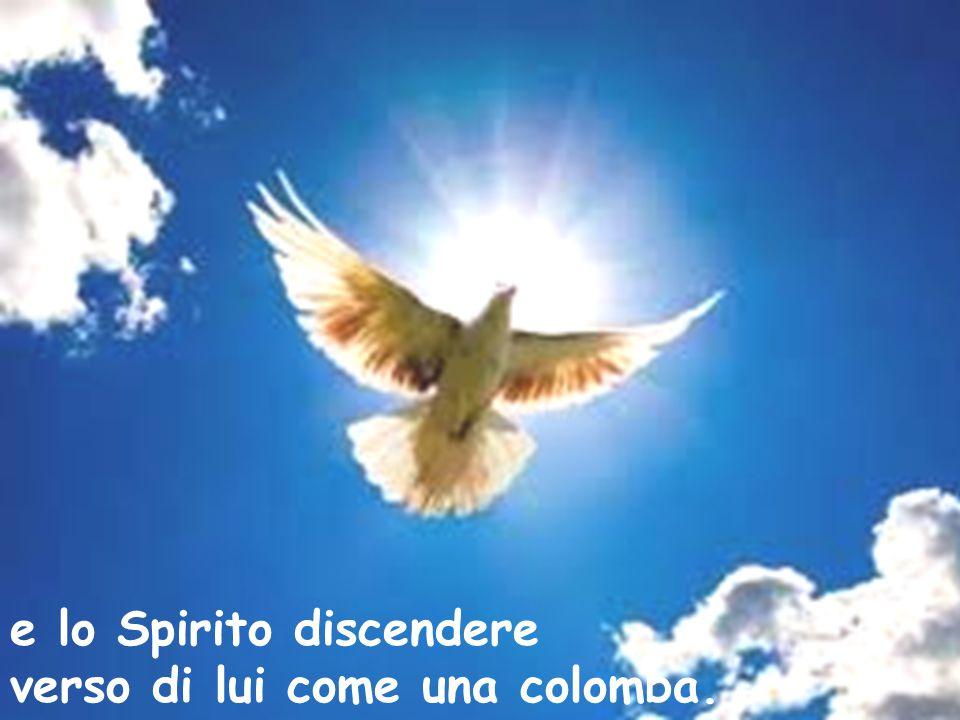 e lo Spirito discendere verso di lui come una colomba.