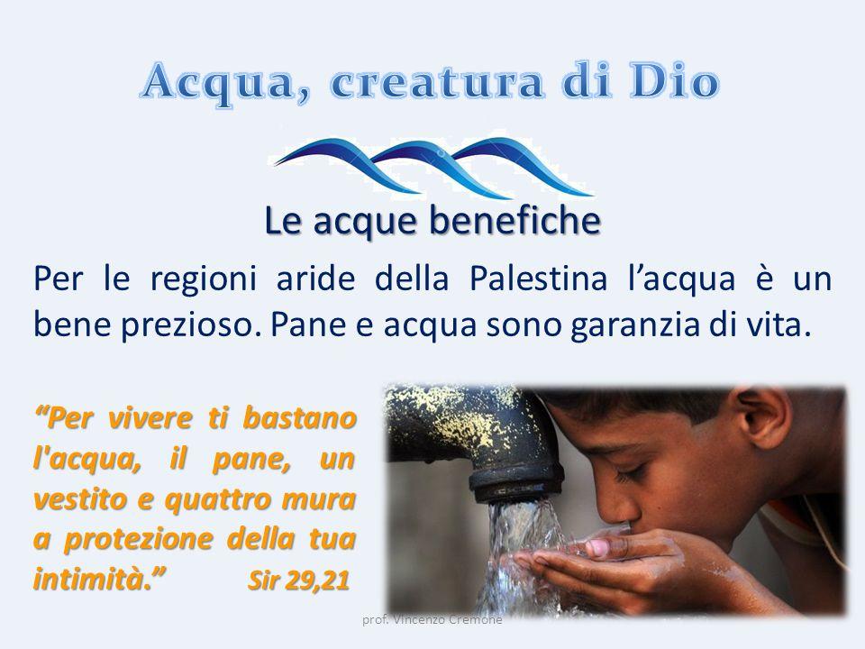 """prof. Vincenzo Cremone Le acque benefiche Per le regioni aride della Palestina l'acqua è un bene prezioso. Pane e acqua sono garanzia di vita. """"Per vi"""