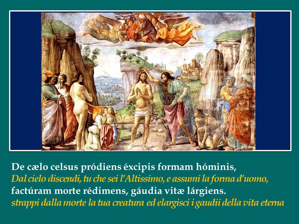 De cælo celsus pródiens éxcipis formam hóminis, Dal cielo discendi, tu che sei l'Altissimo, e assumi la forma d'uomo, factúram morte rédimens, gáudia vitæ lárgiens.